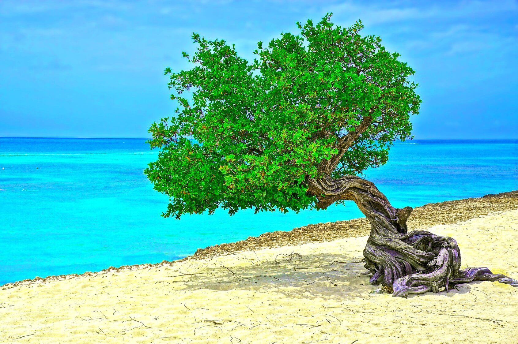 Exclusive Tips For Luxury Travel In Aruba
