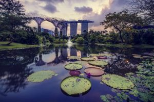 Singapore Botanic Gardens - Things To Do in Singapore - AssistAnt Luxury Travel