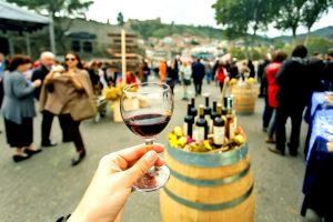 Autumn in Germany - Wine Festivles - AssistAnt Luxury Travel