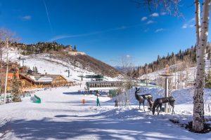 Beginners Ski Resorts