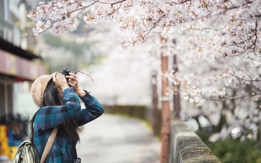 Five of The Most Picturesque Sights in Japan You Need To See