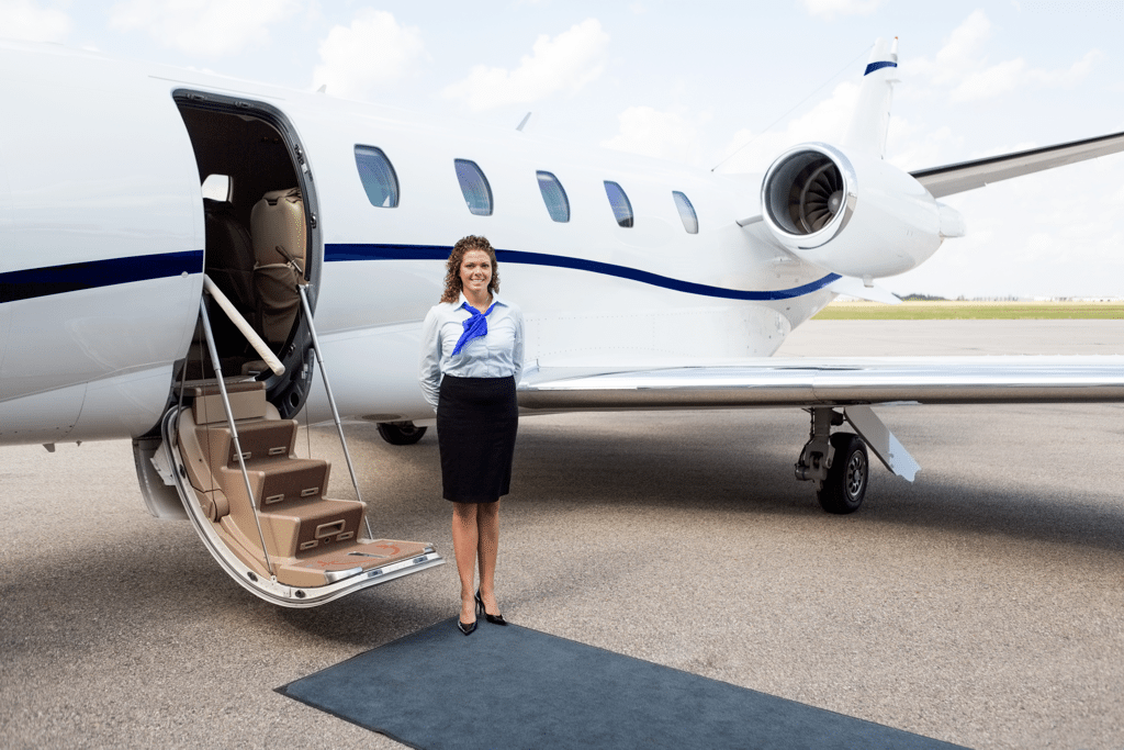 Private Jet for Business - AssistAnt