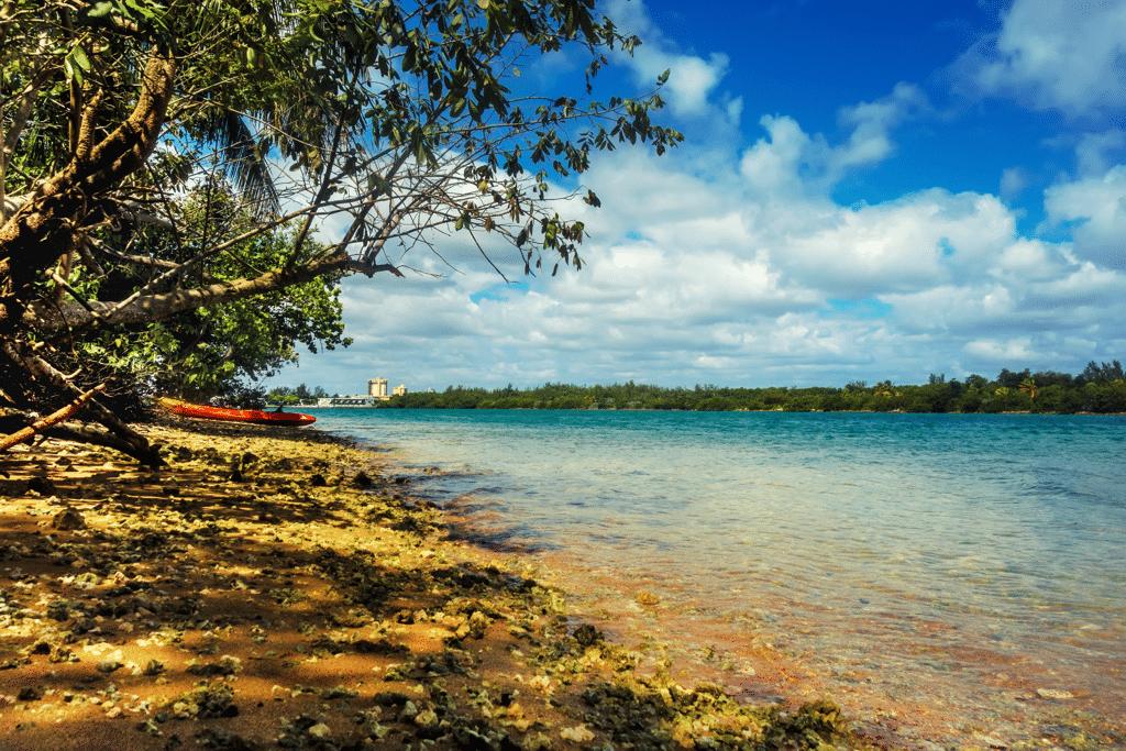 Oleta River State Park Beach Miami - AssistAnt
