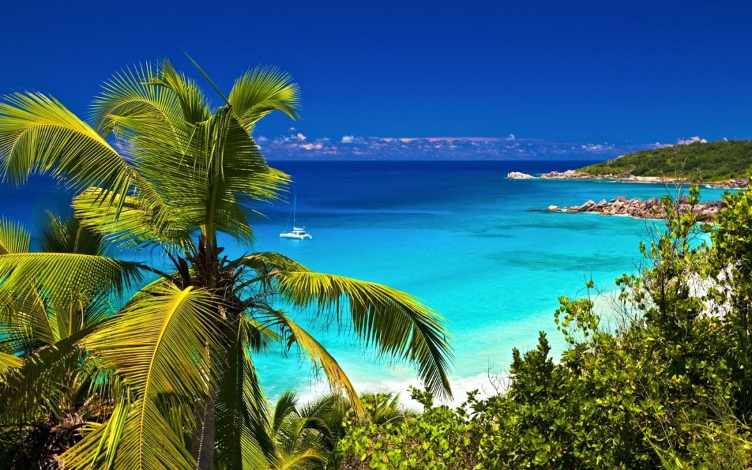 Things to do in the Bahamas - AssistAnt
