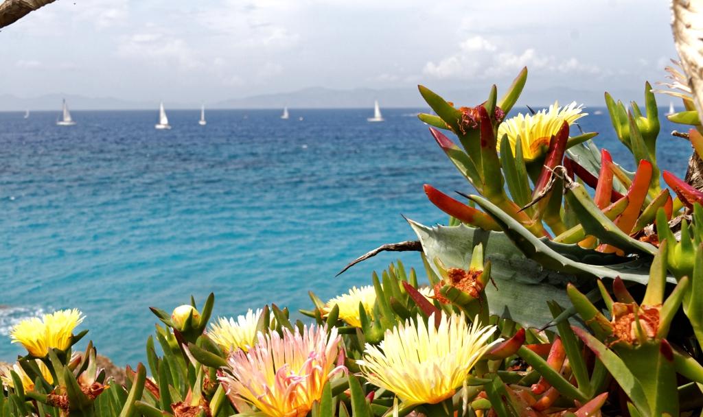 Luxury Resorts Crete Greece - AssistAnt Travel