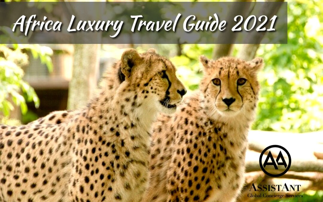 Africa Luxury Travel Guide 2021